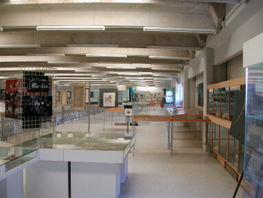 Second floor of the Malacological Museum